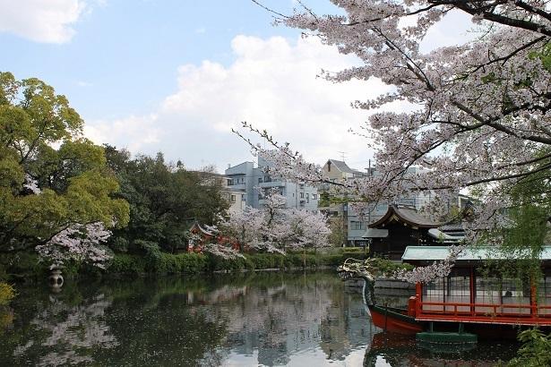 京都1 (9)