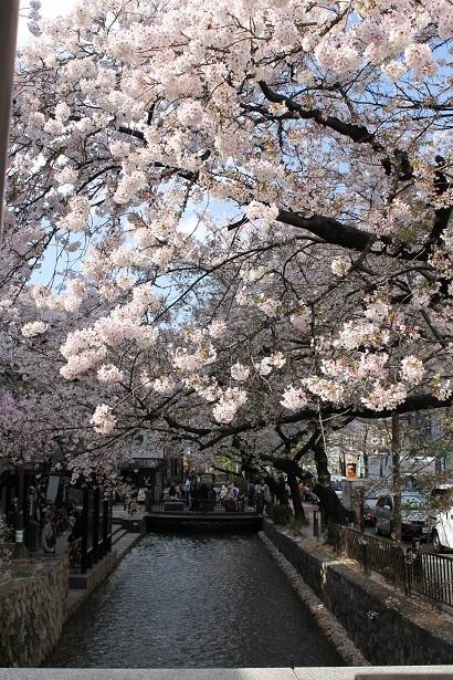 京都1 (12)