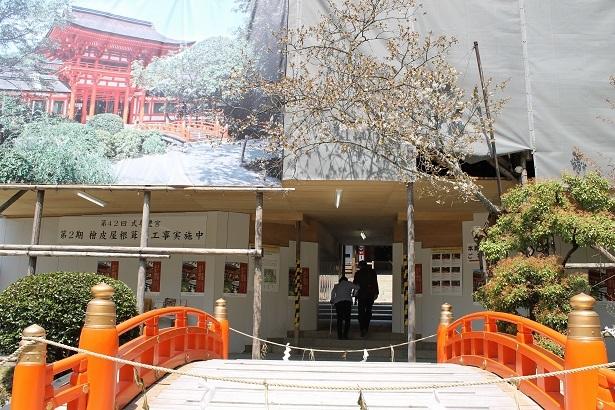 京都2 (6)