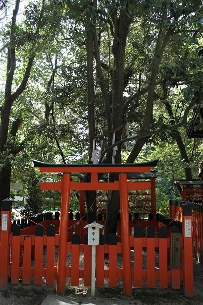 京都2 (19)