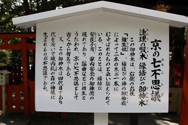京都2 (18)