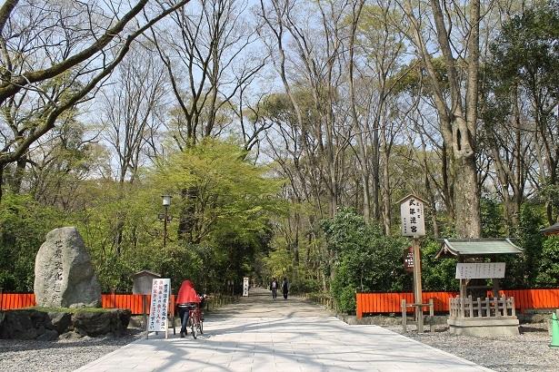 京都2 (22)