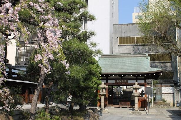 京都2 (25)
