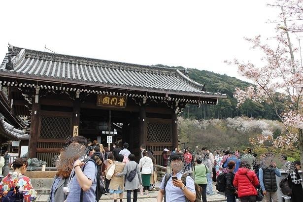京都3 (9)