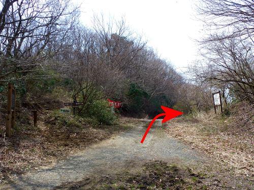 takasuzuyama12.jpg