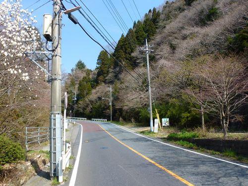 takasuzuyama4.jpg