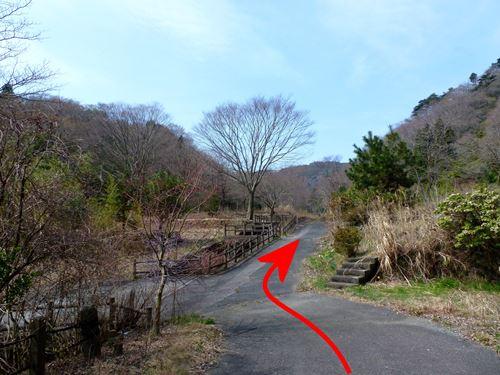 takasuzuyama8.jpg