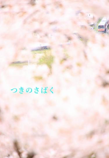IMG_6761to_1.jpg