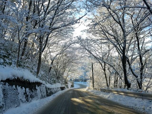 06-02FB銀賞:樹氷のトンネル