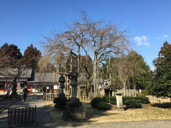 asuwayama-fukui-006.jpg