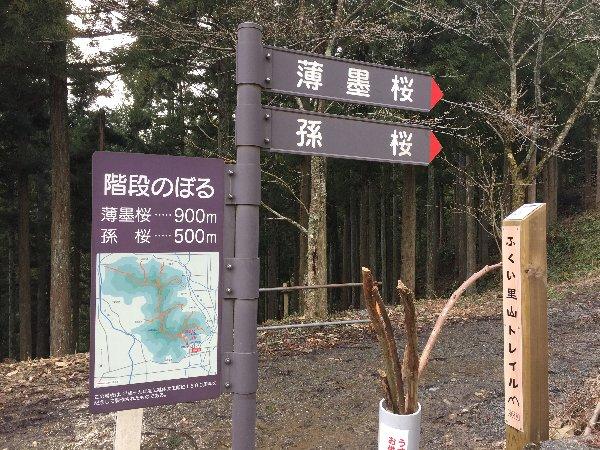 kakyo-awatabe-006.jpg
