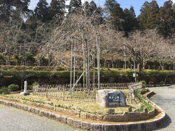 kakyo-awatabe-017.jpg