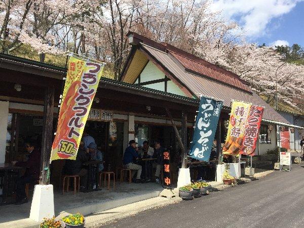 okubiwako-sakura-023.jpg