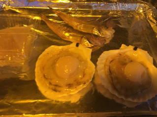 牡蠣奉行031