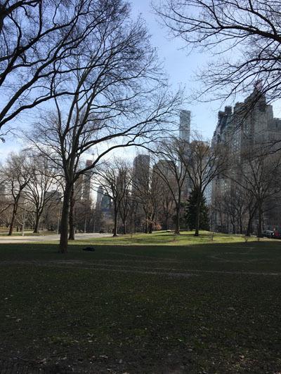 NYC_204
