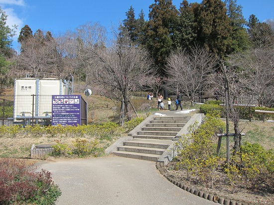 城山公園梅林