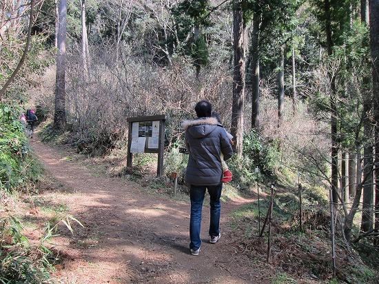 城山林間通路