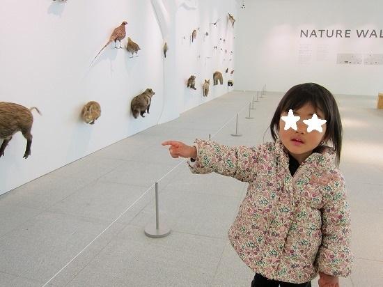 高尾動物展示
