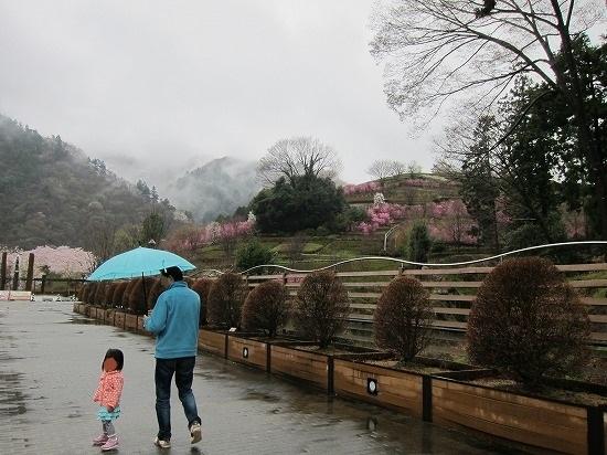 雨のあいかわ公園