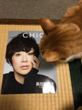 CHICOとりんちゃん