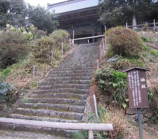 daichuji02.jpg