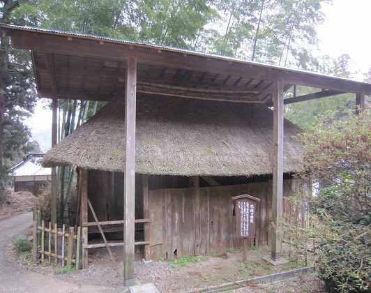 daichuji03.jpg