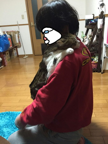 S_5699890233473.jpg