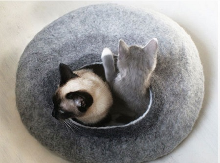 cat-beds-photo3.jpg