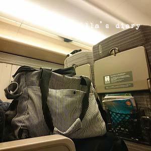 17-02-25-15-05-08-087_photo.jpg