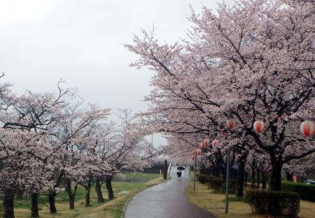 29_4_9 東雲公園 2