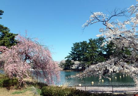29_4_16 群馬7・敷島公園