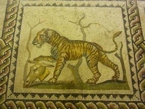 Taranto 15