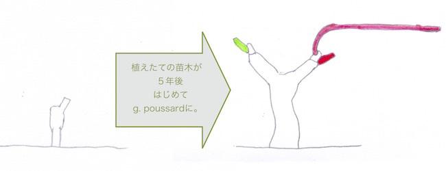 guyotpoussard51.jpg