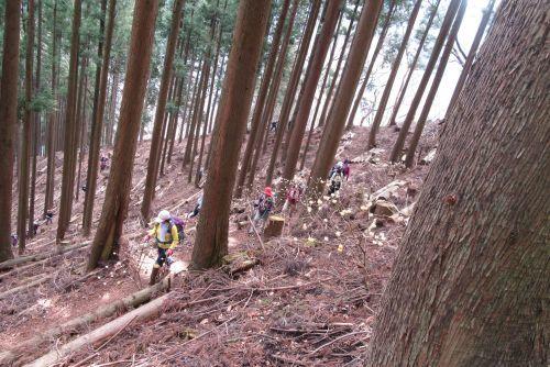 ミツバ岳への登り