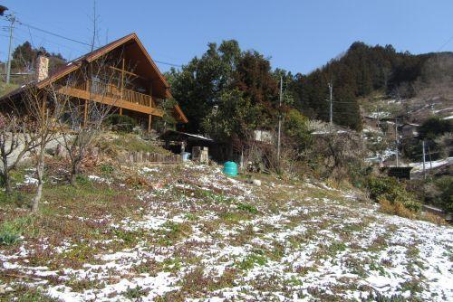 南斜面の残雪