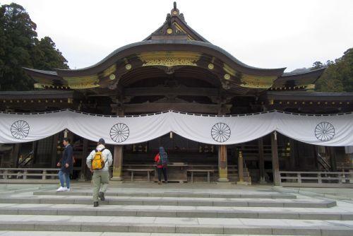弥彦神社本堂