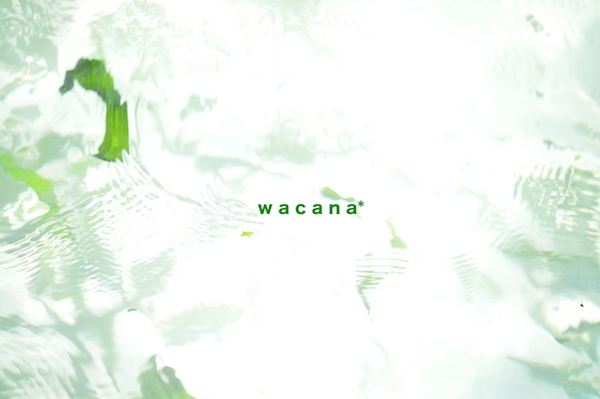 WCN_7774.jpg