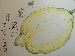 20170310111804df1.jpg