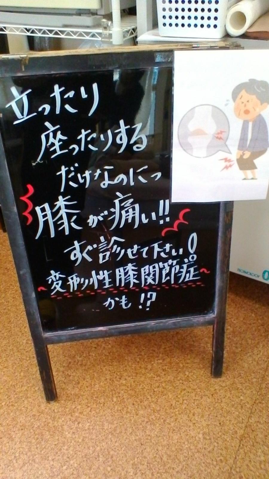 hizahizahiza.jpg
