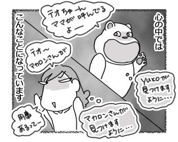 02032017_cat3.jpg