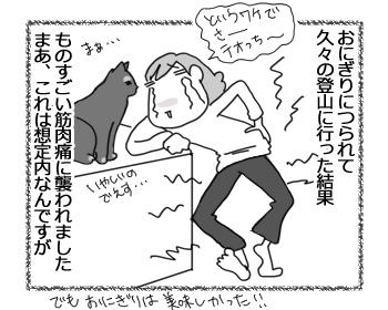 03042017_cat1.jpg