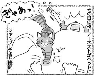 03042017_cat2.jpg