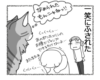 04032017_cat3.jpg