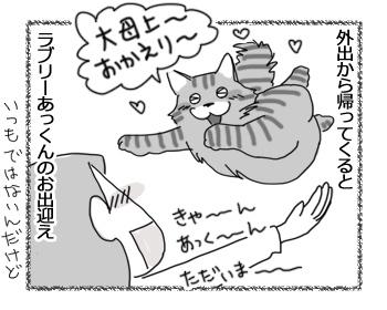 04042017_cat1.jpg