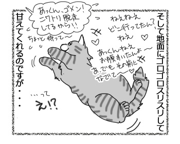 04042017_cat2.jpg