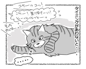 04042017_cat3.jpg
