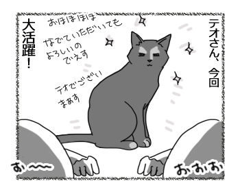07032017_cat5.jpg