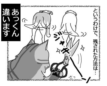08032017_cat4.jpg