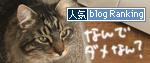 10032017_catbanner.jpg