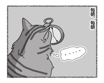 11022017_cat1.jpg